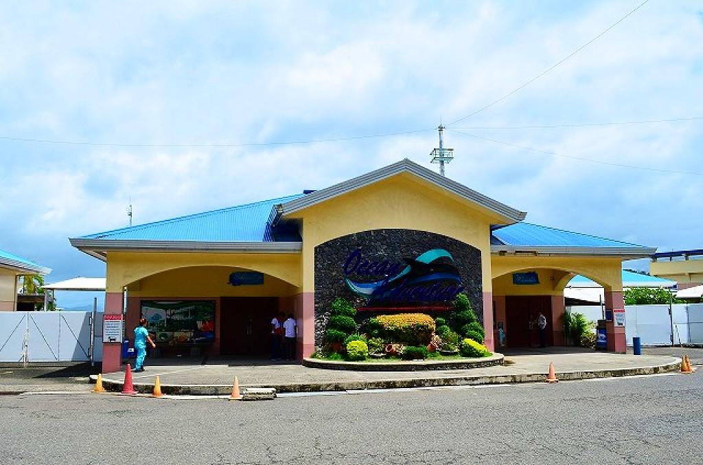 オーシャンアドベンチャー(Ocean Adventure)は水族館でイルカと泳げる