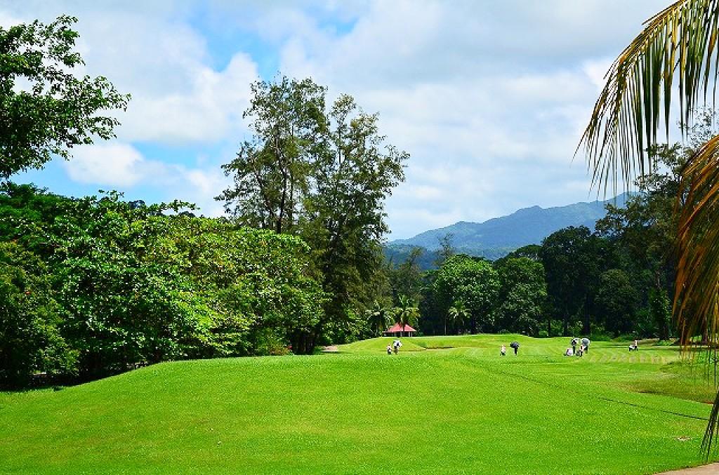 ゴルフ場はグリーンがキレイ