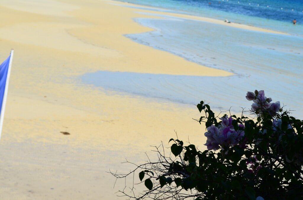 疲れたら安いセブ島のマッサージ、スパ、エステへ!おすすめは?