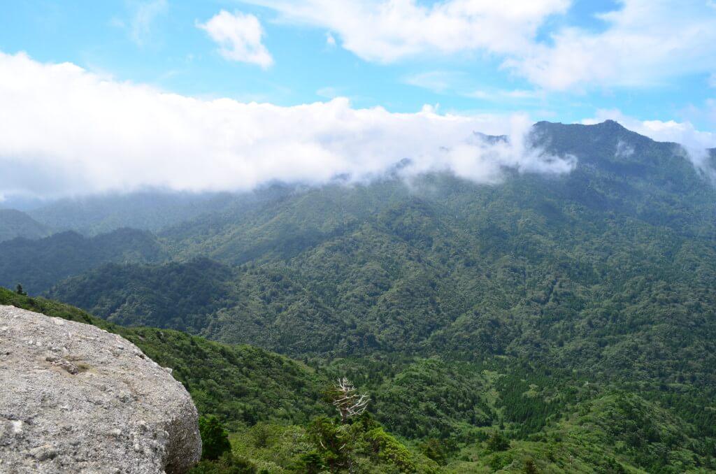 屋久島・白谷雲水峡の「太鼓岩からの景色」は絶景です!大自然の偉大さがわかる!