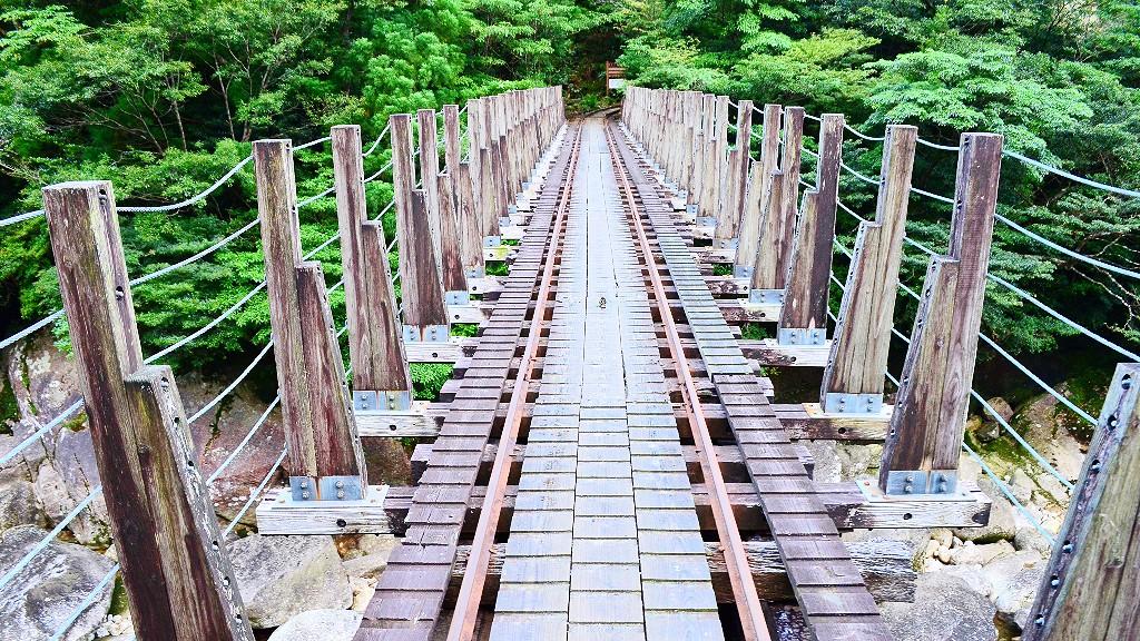 屋久島の縄文杉トレッキングをガイドなしで8時間以上かかる内容やバスなどの注意点を説明するよ