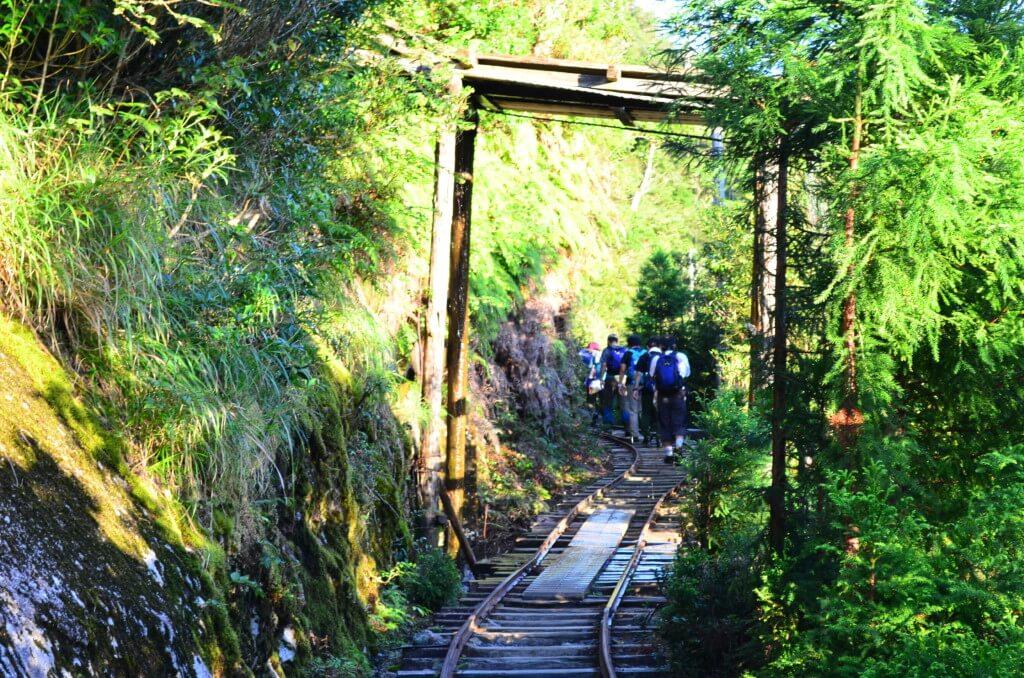 縄文杉トレッキングのトロッコ道は起伏はないけど、白谷雲水峡トレッキングのダメージが!?