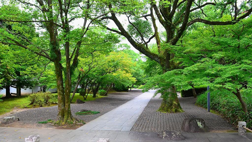 熊本の観光は城彩苑に細川刑部邸!馬刺しが食べたい人が注意すべきこととは?