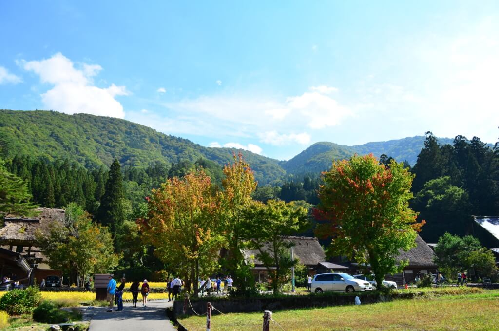 秋には黄金の稲穂に囲まれる白川郷の景色が味わえる