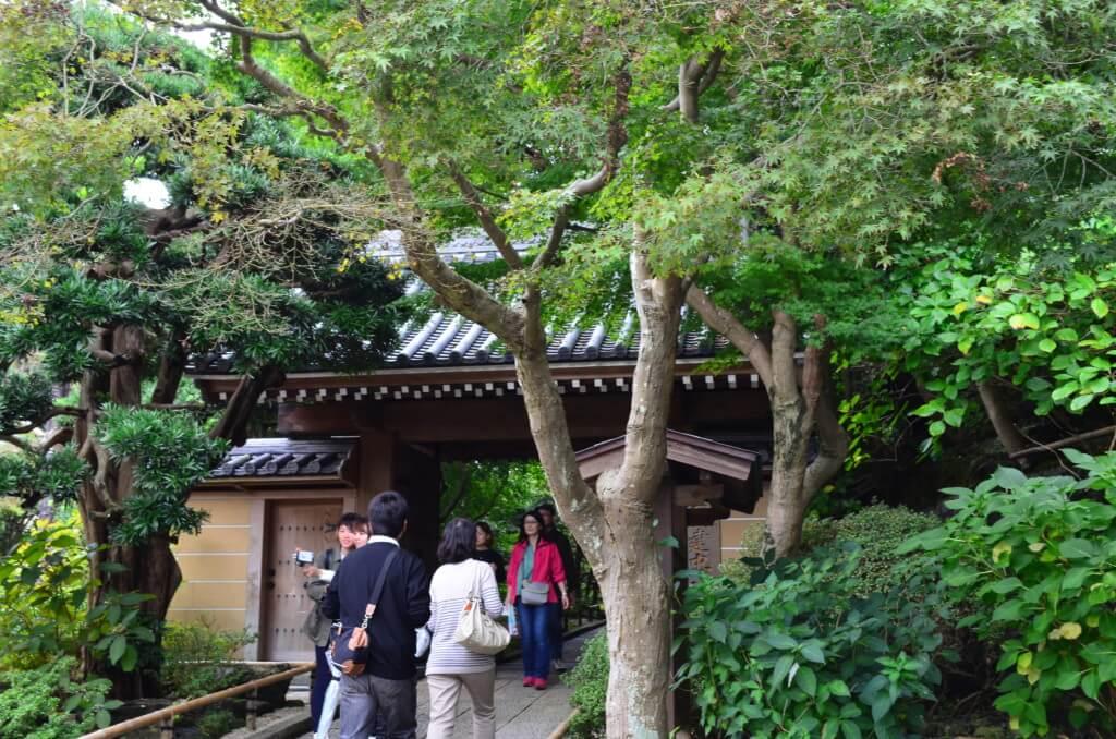鎌倉観光で遠い報国寺は竹林を見ながらお茶を頂く