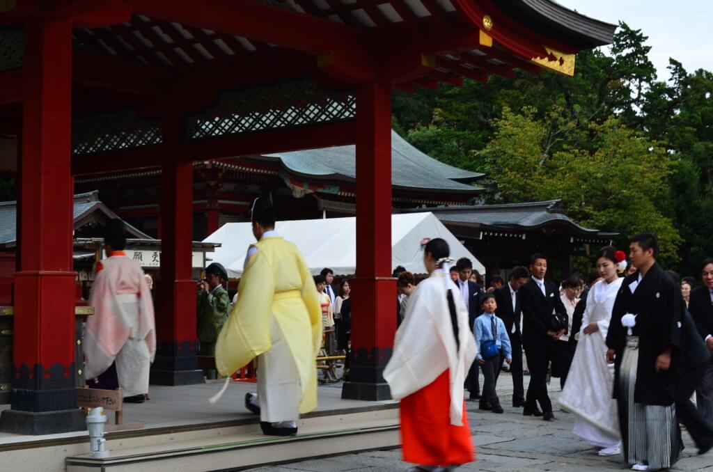 運がいいから?鶴岡八幡宮で「神前結婚式」が観られたよ!
