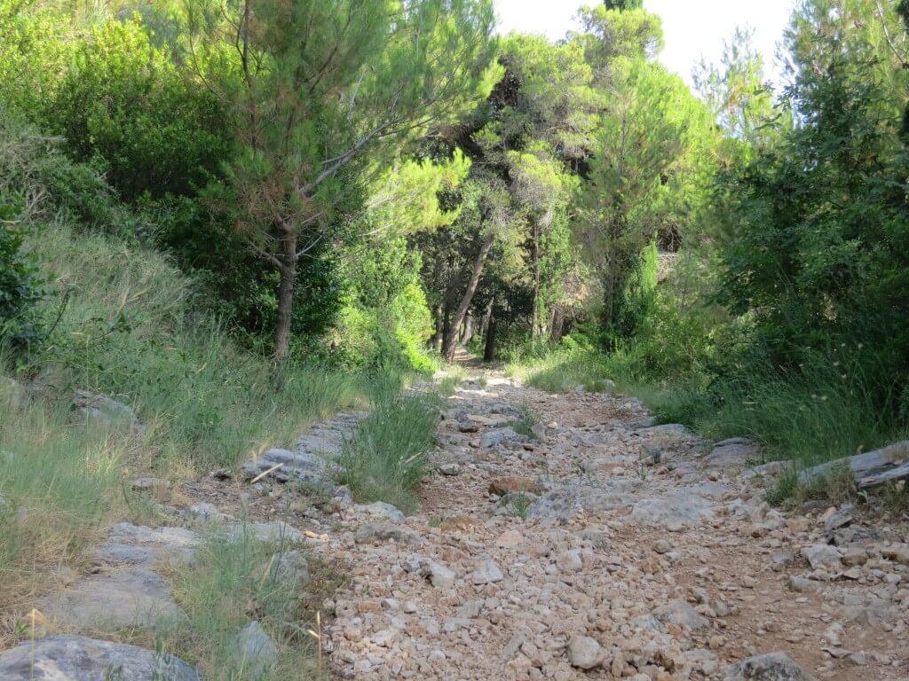 ドブロブニク スルジ山 登山道 クロアチア