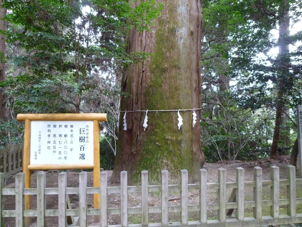 高千穂神社や日本書紀の神々の伝説の地を観光!天岩戸神社は?