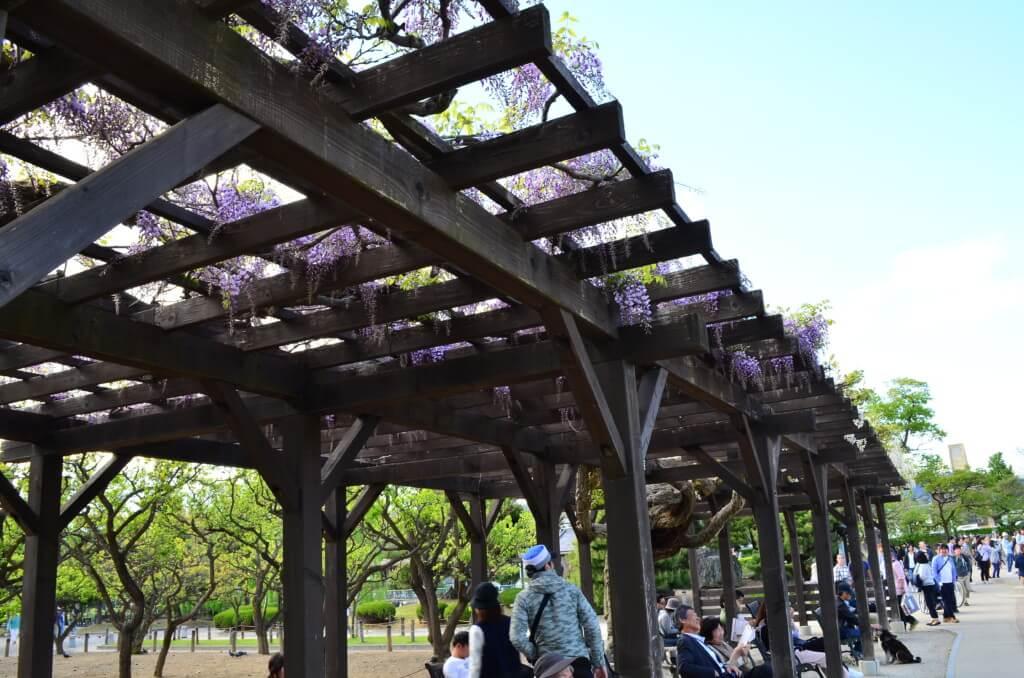 松本公園は憩いの場!