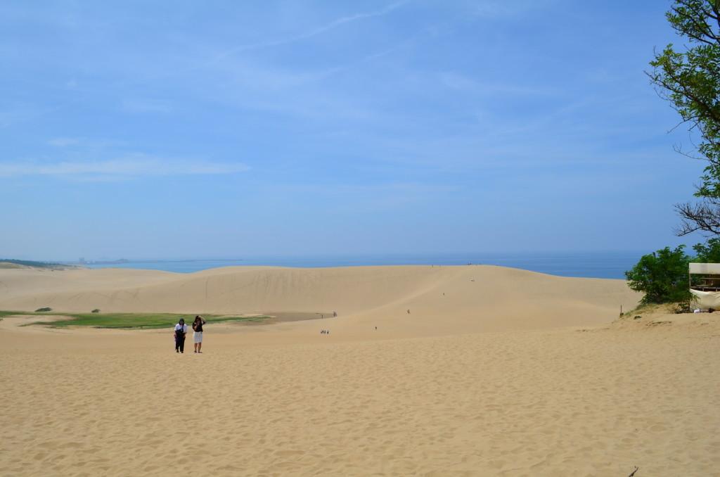 鳥取砂丘は大きすぎ!らくだや観光リフトもあるからね