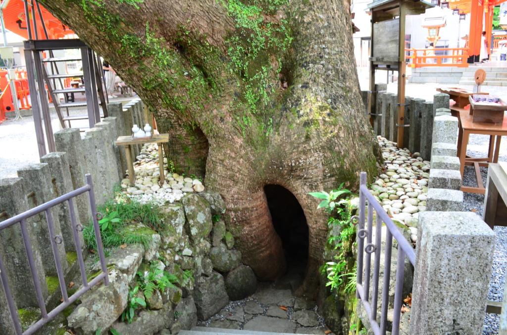熊野那智大社の参拝可能時間や宝物殿について